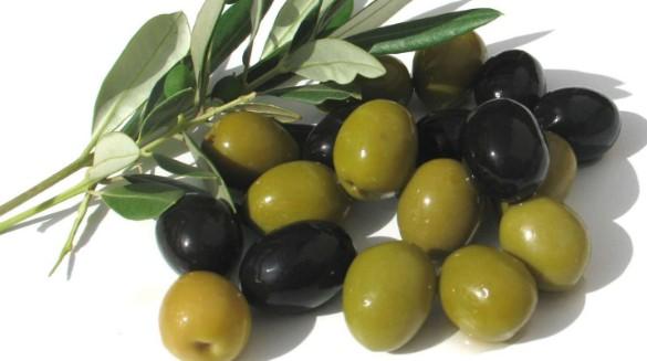 olive35052050